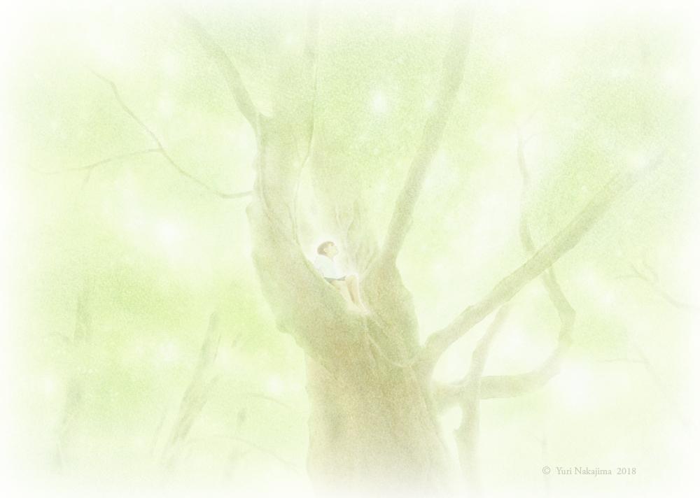 株式会社 木立の文庫